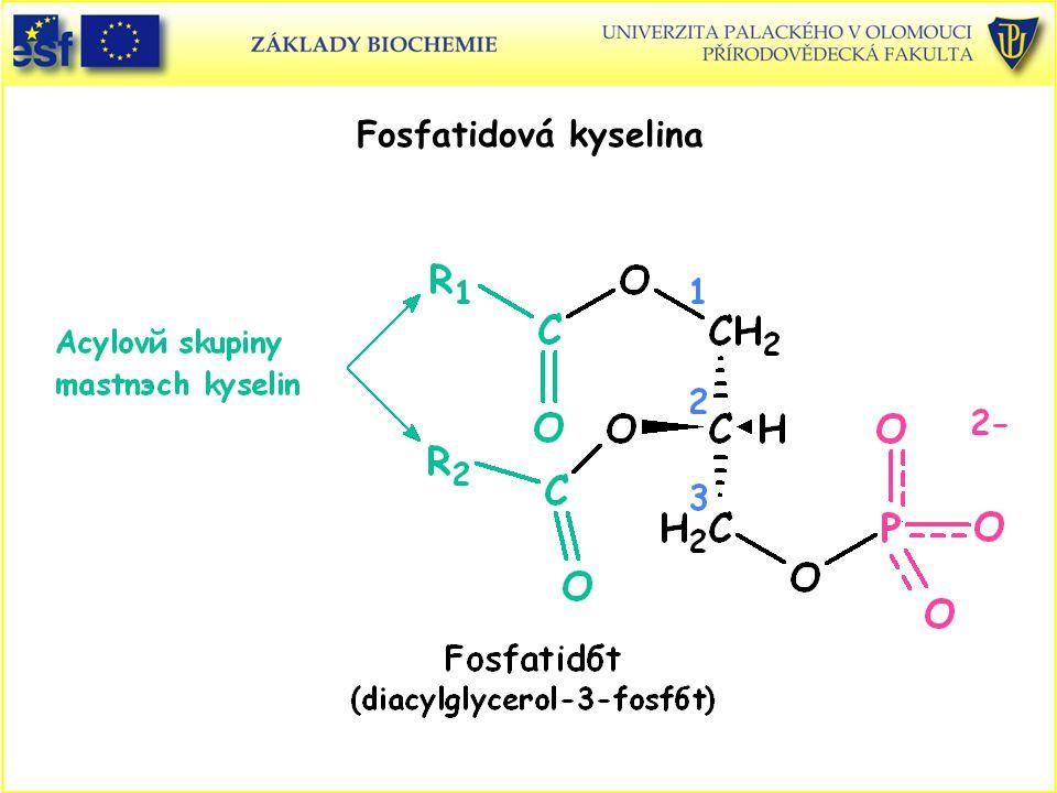 Fosfatidová kyselina