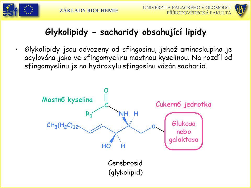 Glykolipidy - sacharidy obsahující lipidy Glykolipidy jsou odvozeny od sfingosinu, jehož aminoskupina je acylována jako ve sfingomyelinu mastnou kyselinou.