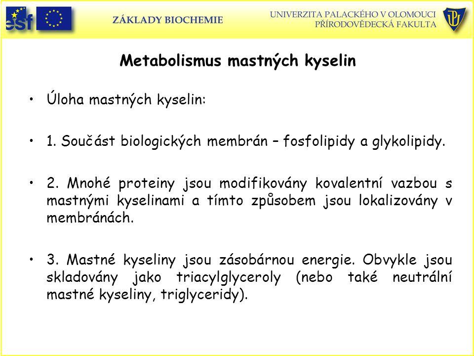 Metabolismus mastných kyselin Úloha mastných kyselin: 1. Součást biologických membrán – fosfolipidy a glykolipidy. 2. Mnohé proteiny jsou modifikovány