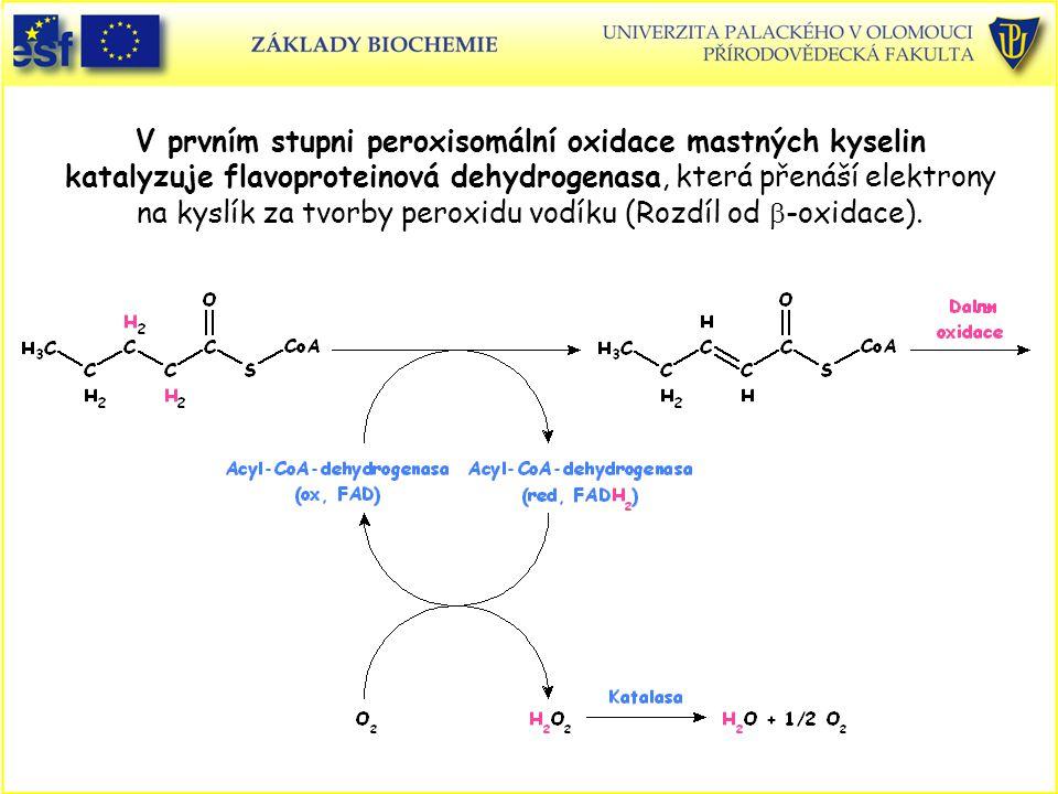 V prvním stupni peroxisomální oxidace mastných kyselin katalyzuje flavoproteinová dehydrogenasa, která přenáší elektrony na kyslík za tvorby peroxidu