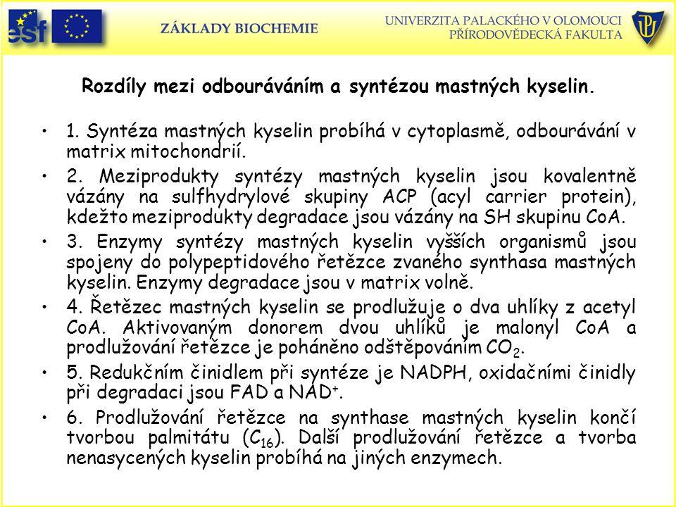 Rozdíly mezi odbouráváním a syntézou mastných kyselin. 1. Syntéza mastných kyselin probíhá v cytoplasmě, odbourávání v matrix mitochondrií. 2. Mezipro