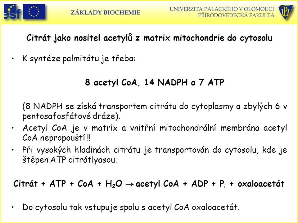 Citrát jako nositel acetylů z matrix mitochondrie do cytosolu K syntéze palmitátu je třeba: 8 acetyl CoA, 14 NADPH a 7 ATP (8 NADPH se získá transportem citrátu do cytoplasmy a zbylých 6 v pentosafosfátové dráze).