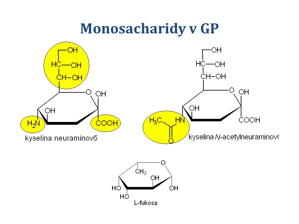 SacharidZkratkaAktivovaný sacharid D-Galaktosa GalUDP-Gal D-Glukosa GlcUDP-Glc D-Mannosa ManGDP-Man K.