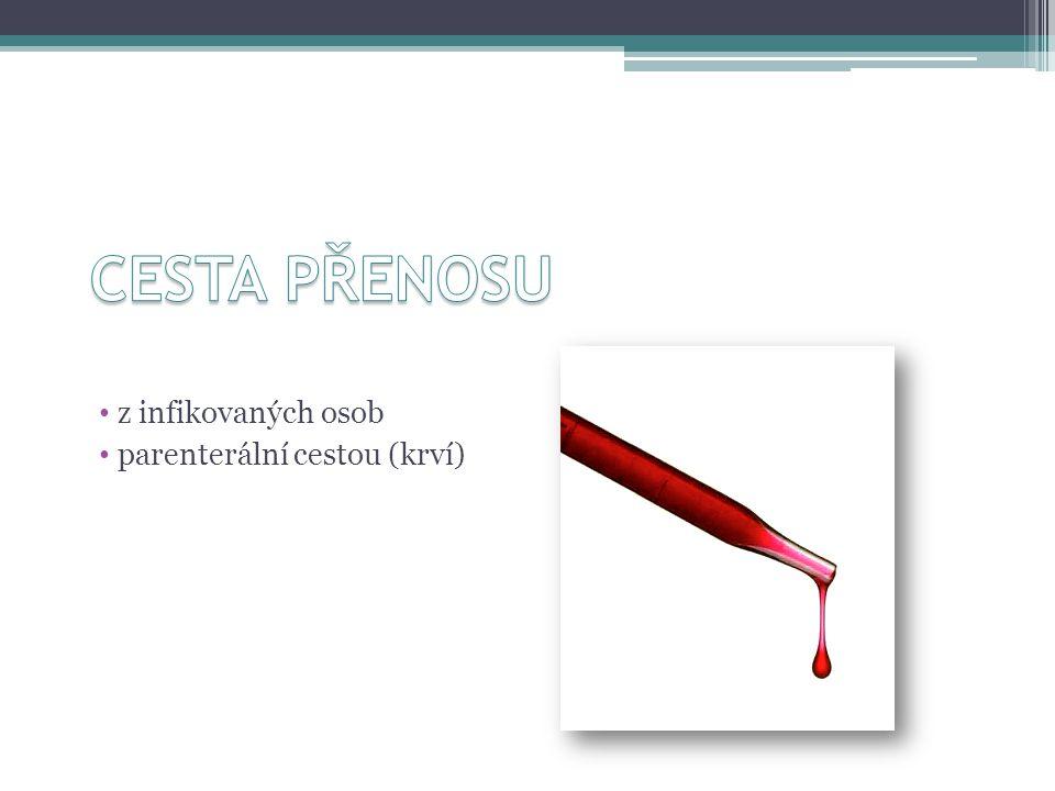 z infikovaných osob parenterální cestou (krví)