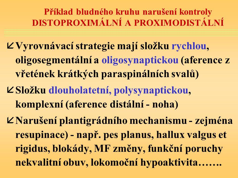 Příklad bludného kruhu narušení kontroly DISTOPROXIMÁLNÍ A PROXIMODISTÁLNÍ åVyrovnávací strategie mají složku rychlou, oligosegmentální a oligosynapti