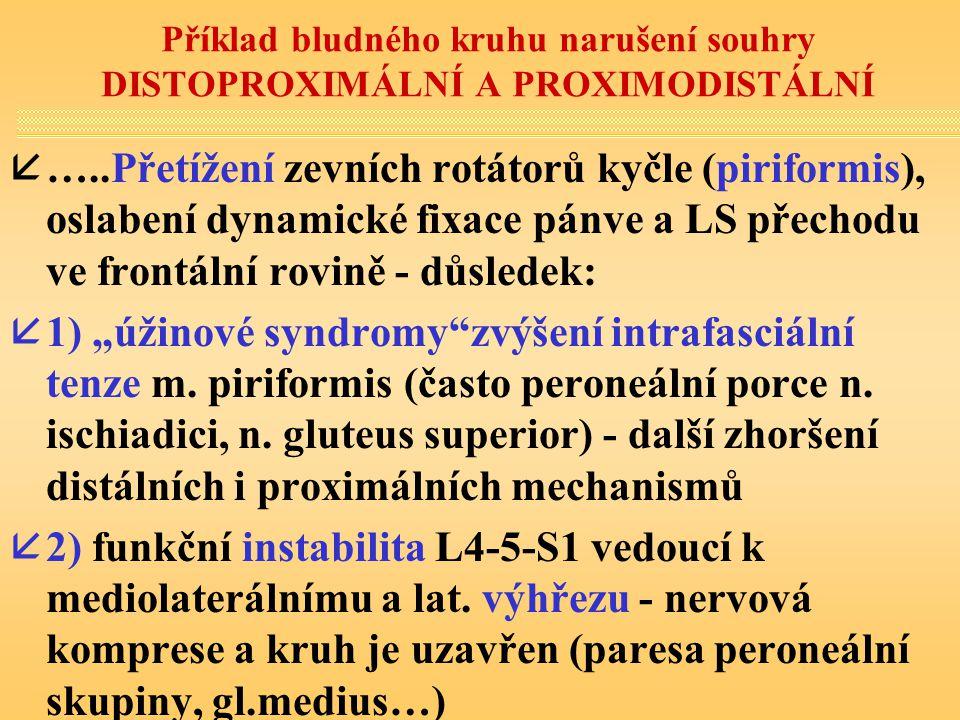 Příklad bludného kruhu narušení souhry DISTOPROXIMÁLNÍ A PROXIMODISTÁLNÍ å…..Přetížení zevních rotátorů kyčle (piriformis), oslabení dynamické fixace