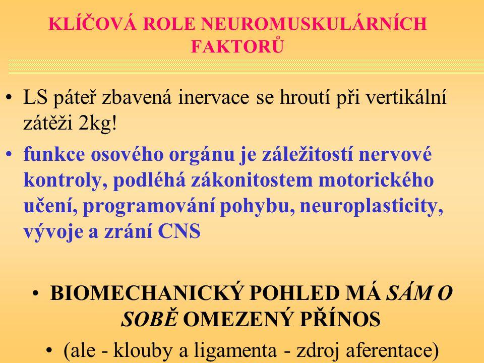 KLÍČOVÁ ROLE NEUROMUSKULÁRNÍCH FAKTORŮ LS páteř zbavená inervace se hroutí při vertikální zátěži 2kg! funkce osového orgánu je záležitostí nervové kon