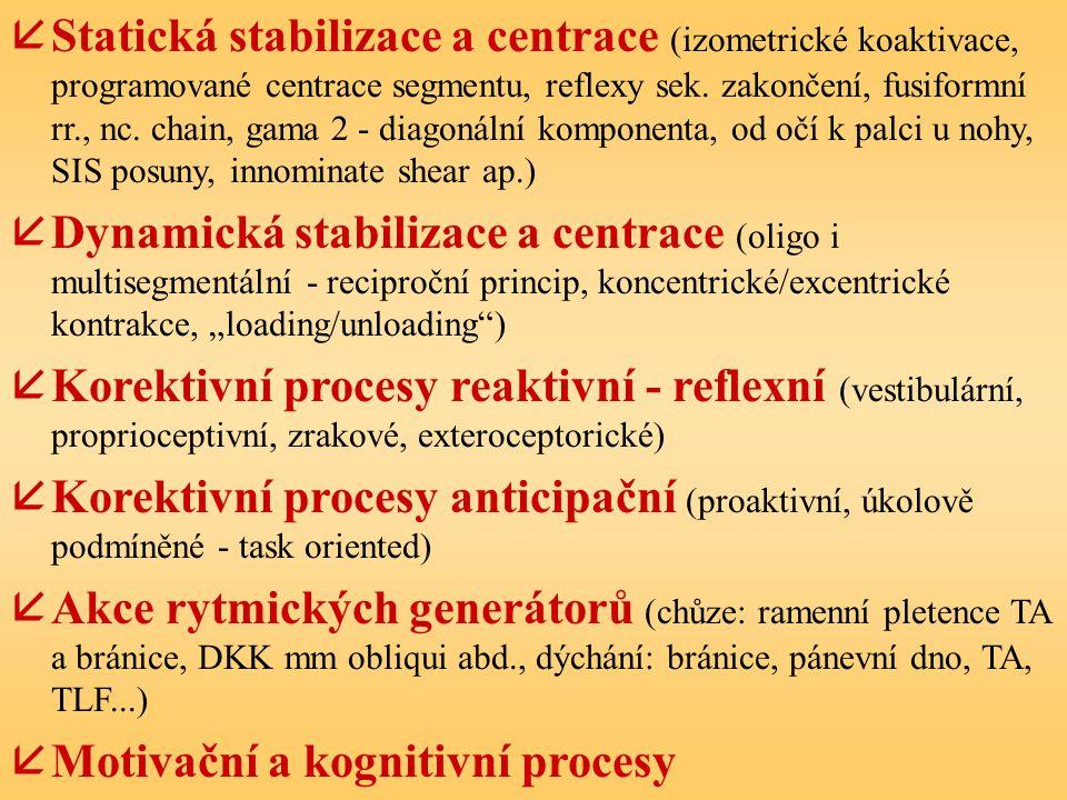 åStatická stabilizace a centrace (izometrické koaktivace, programované centrace segmentu, reflexy sek. zakončení, fusiformní rr., nc. chain, gama 2 -