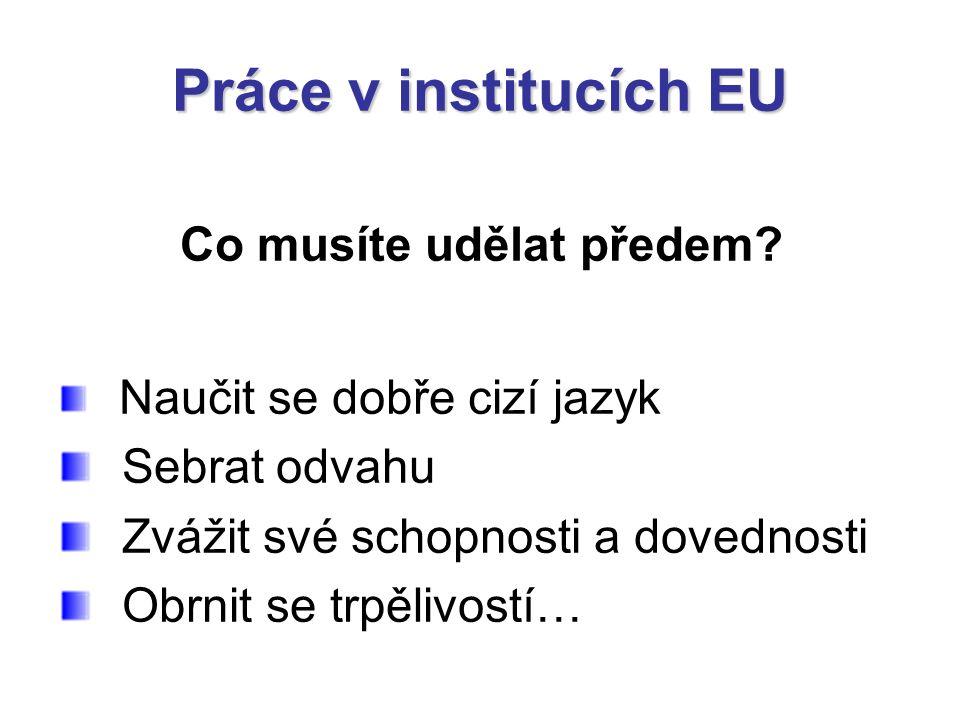 Práce v institucích EU Co musíte udělat předem? Naučit se dobře cizí jazyk Sebrat odvahu Zvážit své schopnosti a dovednosti Obrnit se trpělivostí…