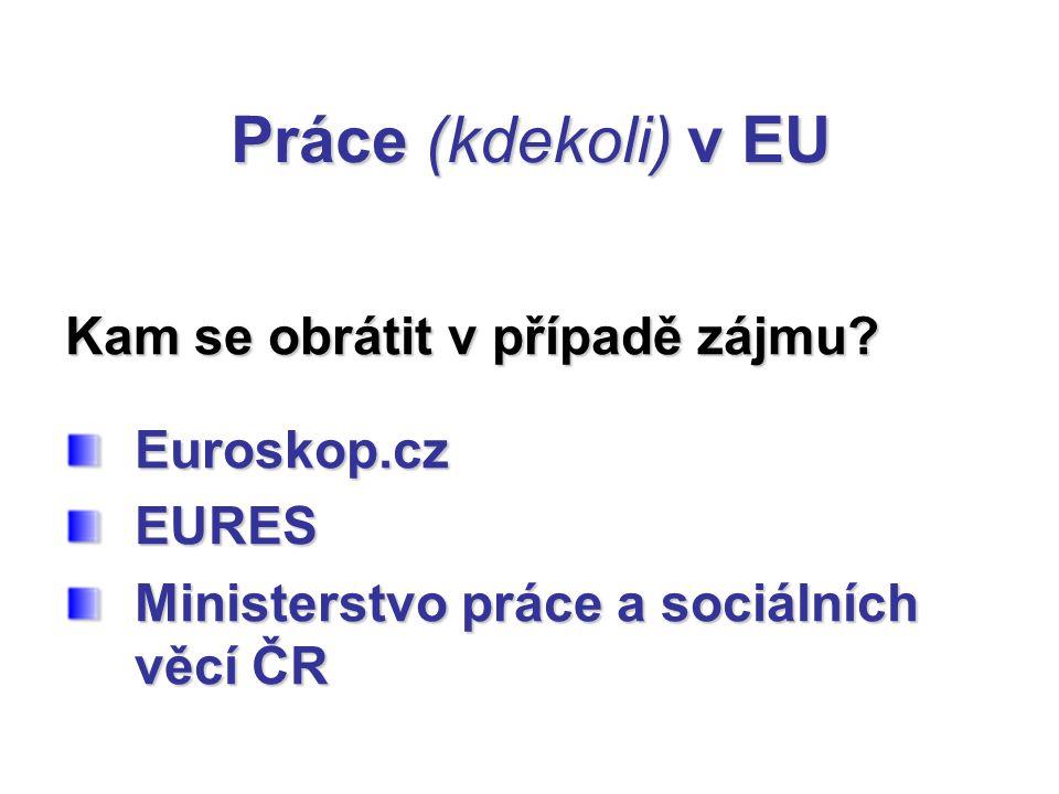 Práce (kdekoli) v EU Kam se obrátit v případě zájmu? Euroskop.cz Euroskop.cz EURES EURES Ministerstvo práce a sociálních věcí ČR Ministerstvo práce a