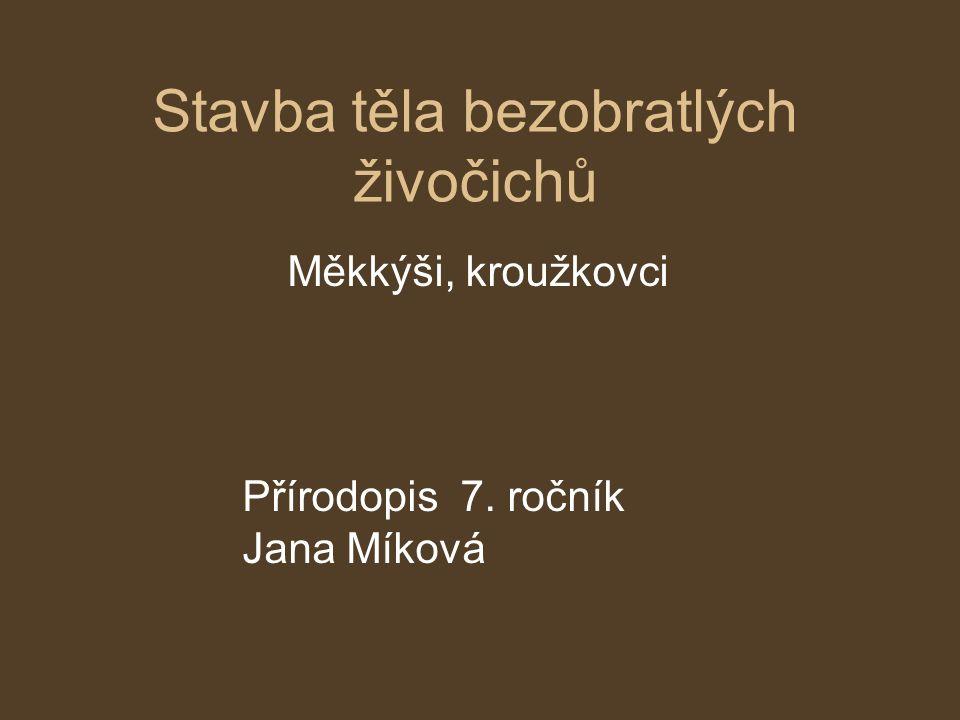 Stavba těla bezobratlých živočichů Měkkýši, kroužkovci Přírodopis 7. ročník Jana Míková