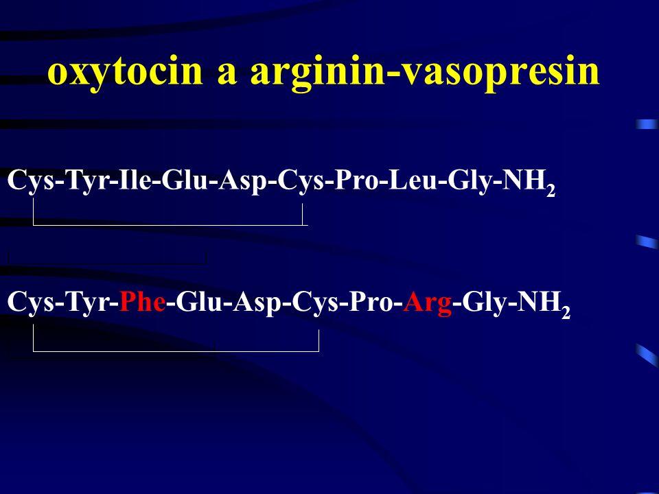Oxytocin a sexuální aktivita Koncentrace oxytocinu v cirkulaci stoupá během sexuální aktivity u žen i u mužů U žen je vzestup dokonce výraznější než u mužů U žen bazální hladiny oxytocinu jsou vyšší ve folikulární fázi cyklu a během ovulace než ve fázi luteální a lubrikace během sexuálního vzrušení je úměrná hladinám oxytocinu U mužů je nárůst hladin oxytocinu nejmohutnější při erekci a ejakulaci