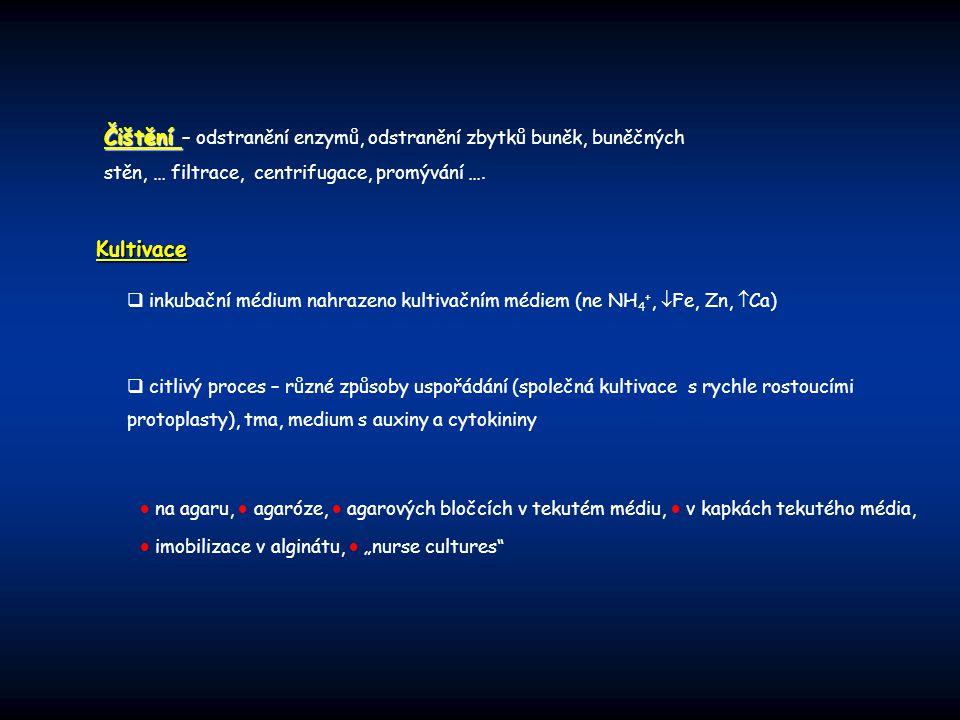 Čištění Čištění – odstranění enzymů, odstranění zbytků buněk, buněčných stěn, … filtrace, centrifugace, promývání …. Kultivace  inkubační médium nahr