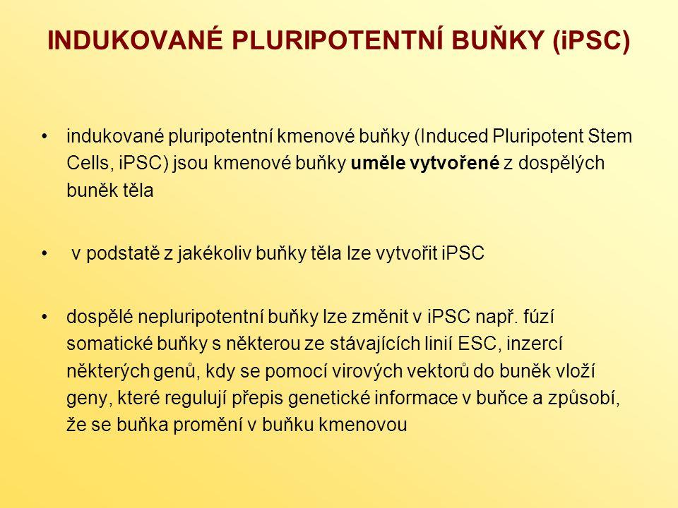 INDUKOVANÉ PLURIPOTENTNÍ BUŇKY (iPSC) indukované pluripotentní kmenové buňky (Induced Pluripotent Stem Cells, iPSC) jsou kmenové buňky uměle vytvořené