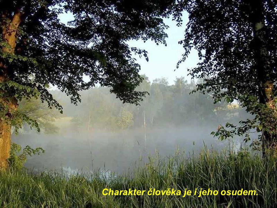Vodu do úst si obvykle nabere ten, kdo neumí plavat v potoce slov.