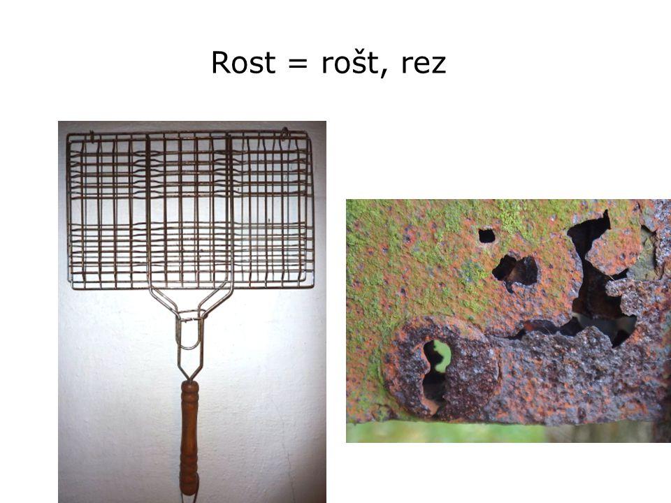 Rost = rošt, rez