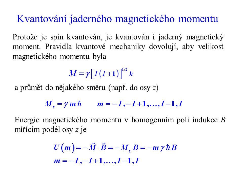 Kvantování jaderného magnetického momentu a průmět do nějakého směru (např. do osy z) Protože je spin kvantován, je kvantován i jaderný magnetický mom