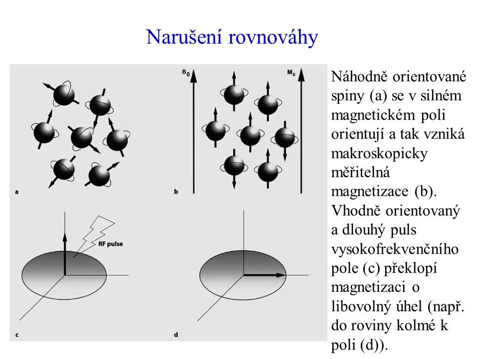 Narušení rovnováhy Náhodně orientované spiny (a) se v silném magnetickém poli orientují a tak vzniká makroskopicky měřitelná magnetizace (b).
