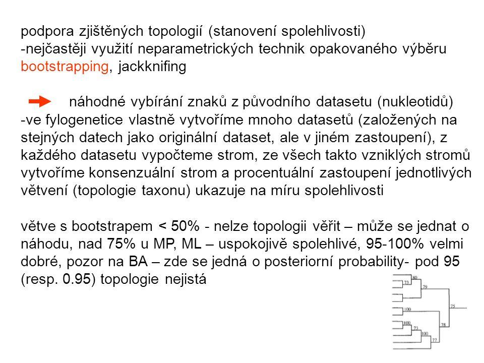 podpora zjištěných topologií (stanovení spolehlivosti) -nejčastěji využití neparametrických technik opakovaného výběru bootstrapping, jackknifing náhodné vybírání znaků z původního datasetu (nukleotidů) -ve fylogenetice vlastně vytvoříme mnoho datasetů (založených na stejných datech jako originální dataset, ale v jiném zastoupení), z každého datasetu vypočteme strom, ze všech takto vzniklých stromů vytvoříme konsenzuální strom a procentuální zastoupení jednotlivých větvení (topologie taxonu) ukazuje na míru spolehlivosti větve s bootstrapem < 50% - nelze topologii věřit – může se jednat o náhodu, nad 75% u MP, ML – uspokojivě spolehlivé, 95-100% velmi dobré, pozor na BA – zde se jedná o posteriorní probability- pod 95 (resp.