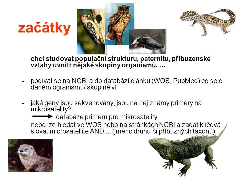 začátky chci studovat populační strukturu, paternitu, příbuzenské vztahy uvnitř nějaké skupiny organismů, … -podívat se na NCBI a do databází článků (WOS, PubMed) co se o daném ogranismu/ skupině ví -jaké geny jsou sekvenovány, jsou na něj známy primery na mikrosatelity.