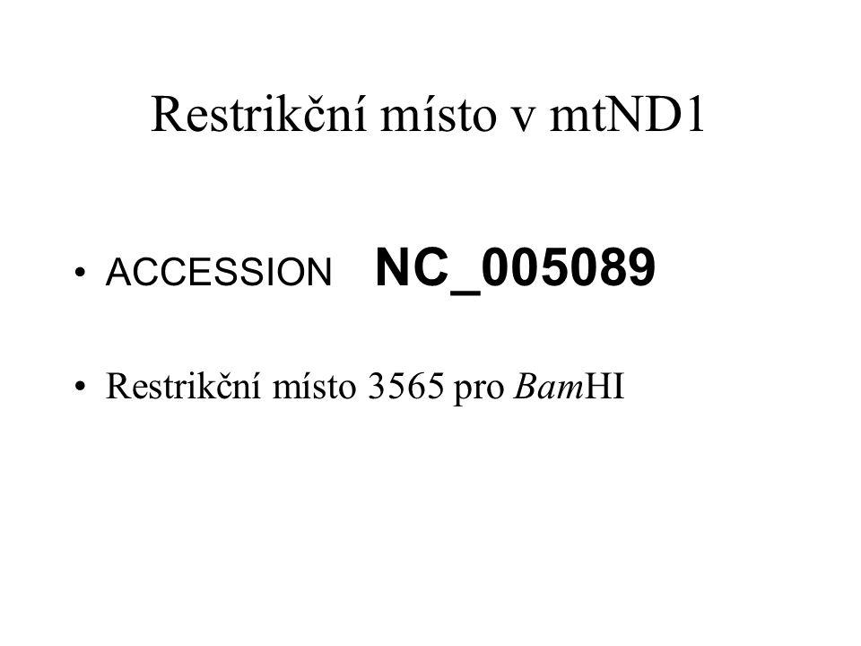 Restrikční místo v mtND1 ACCESSION NC_005089 Restrikční místo 3565 pro BamHI
