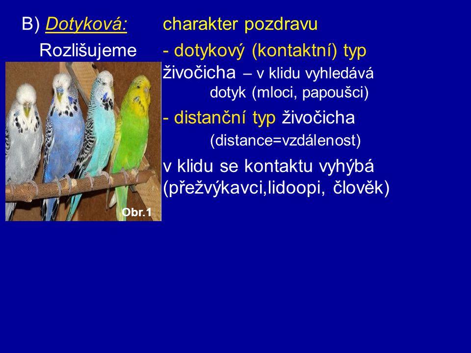 B) Dotyková: charakter pozdravu Rozlišujeme - dotykový (kontaktní) typ živočicha – v klidu vyhledává dotyk (mloci, papoušci) - distanční typ živočicha (distance=vzdálenost) v klidu se kontaktu vyhýbá (přežvýkavci,lidoopi, člověk) Obr.1