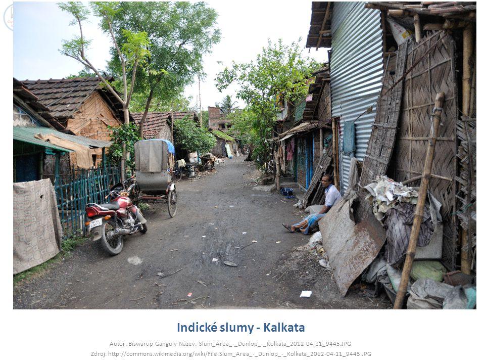 Indické slumy - Kalkata Autor: Biswarup Ganguly Název: Slum_Area_-_Dunlop_-_Kolkata_2012-04-11_9445.JPG Zdroj: http://commons.wikimedia.org/wiki/File: