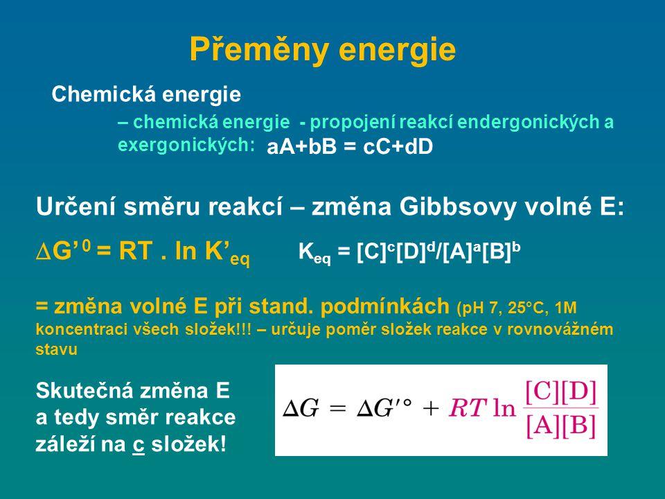 Přeměny energie Chemická energie – chemická energie - propojení reakcí endergonických a exergonických: Určení směru reakcí – změna Gibbsovy volné E: 