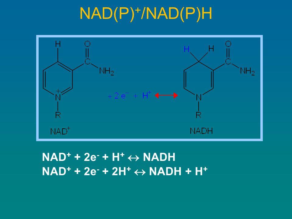 NAD(P) + /NAD(P)H NAD + + 2e - + H +  NADH NAD + + 2e - + 2H +  NADH + H +