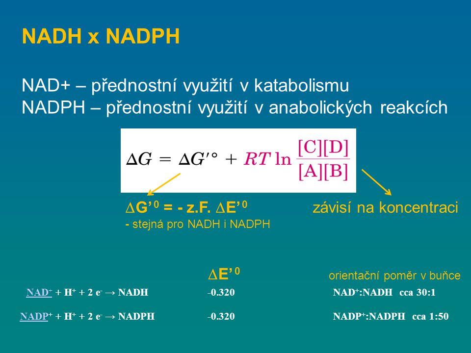 NADH x NADPH NAD+ – přednostní využití v katabolismu NADPH – přednostní využití v anabolických reakcích NAD + NAD + + H + + 2 e - → NADH-0.320NAD + :N