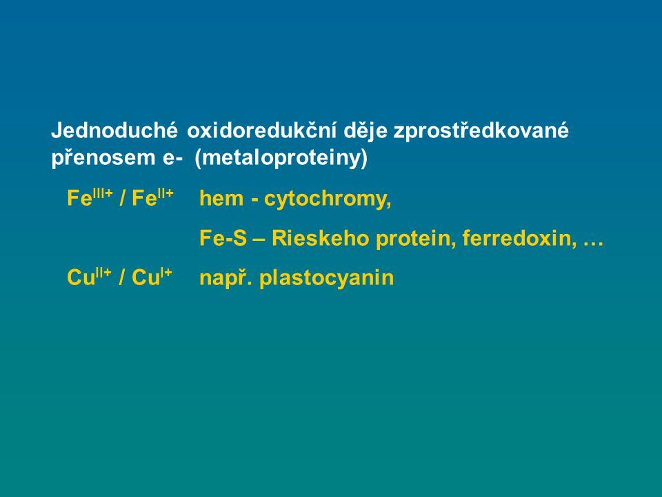 Fe III+ / Fe II+ hem - cytochromy, Fe-S – Rieskeho protein, ferredoxin, … Cu II+ / Cu I+ např. plastocyanin Jednoduché oxidoredukční děje zprostředkov