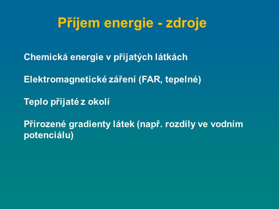 Příjem energie - zdroje Chemická energie v přijatých látkách Elektromagnetické záření (FAR, tepelné) Teplo přijaté z okolí Přirozené gradienty látek (