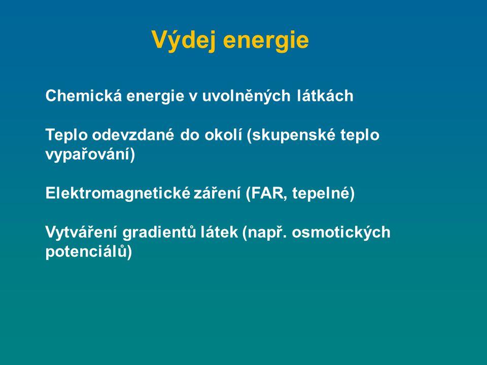 Výdej energie Chemická energie v uvolněných látkách Teplo odevzdané do okolí (skupenské teplo vypařování) Elektromagnetické záření (FAR, tepelné) Vytv