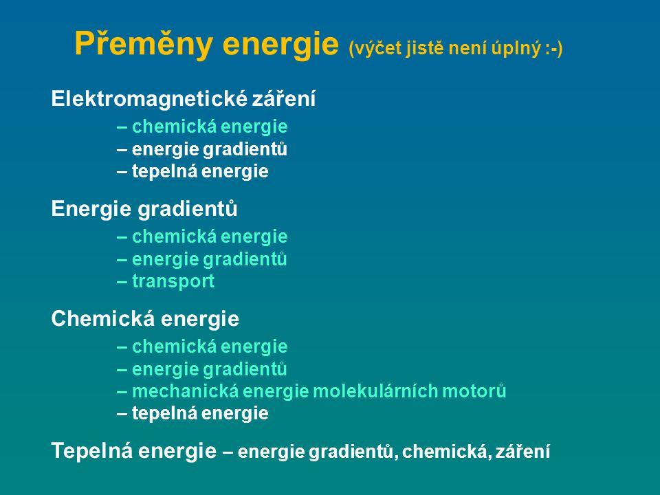 Přeměny energie (výčet jistě není úplný :-) Elektromagnetické záření – chemická energie – energie gradientů – tepelná energie Energie gradientů – chem