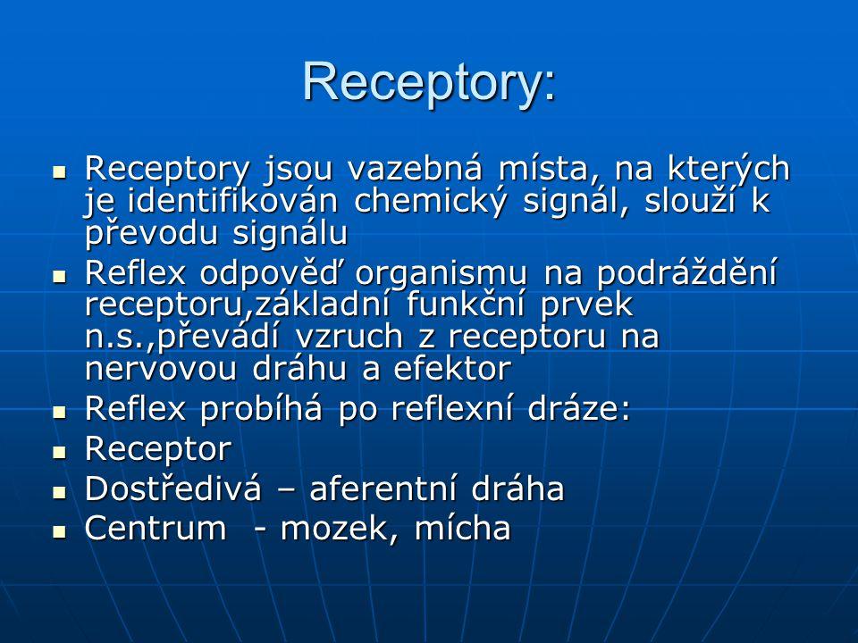 Receptory: Receptory jsou vazebná místa, na kterých je identifikován chemický signál, slouží k převodu signálu Receptory jsou vazebná místa, na kterých je identifikován chemický signál, slouží k převodu signálu Reflex odpověď organismu na podráždění receptoru,základní funkční prvek n.s.,převádí vzruch z receptoru na nervovou dráhu a efektor Reflex odpověď organismu na podráždění receptoru,základní funkční prvek n.s.,převádí vzruch z receptoru na nervovou dráhu a efektor Reflex probíhá po reflexní dráze: Reflex probíhá po reflexní dráze: Receptor Receptor Dostředivá – aferentní dráha Dostředivá – aferentní dráha Centrum - mozek, mícha Centrum - mozek, mícha