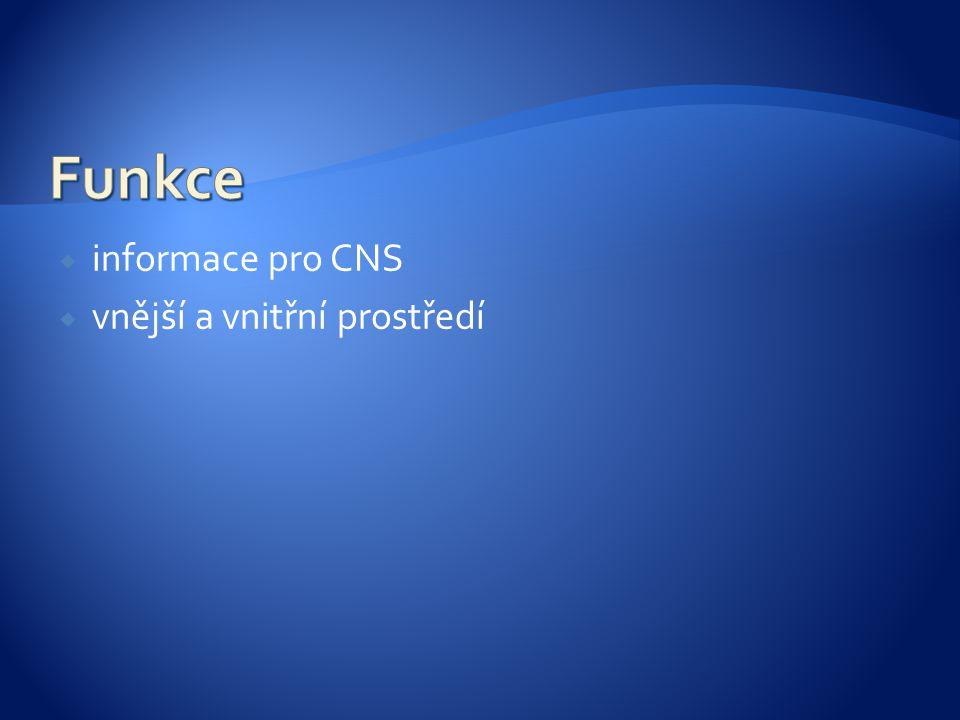  informace pro CNS  vnější a vnitřní prostředí