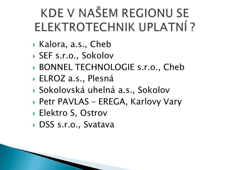  Kalora, a.s., Cheb  SEF s.r.o., Sokolov  BONNEL TECHNOLOGIE s.r.o., Cheb  ELROZ a.s., Plesná  Sokolovská uhelná a.s., Sokolov  Petr PAVLAS – EREGA, Karlovy Vary  Elektro S, Ostrov  DSS s.r.o., Svatava
