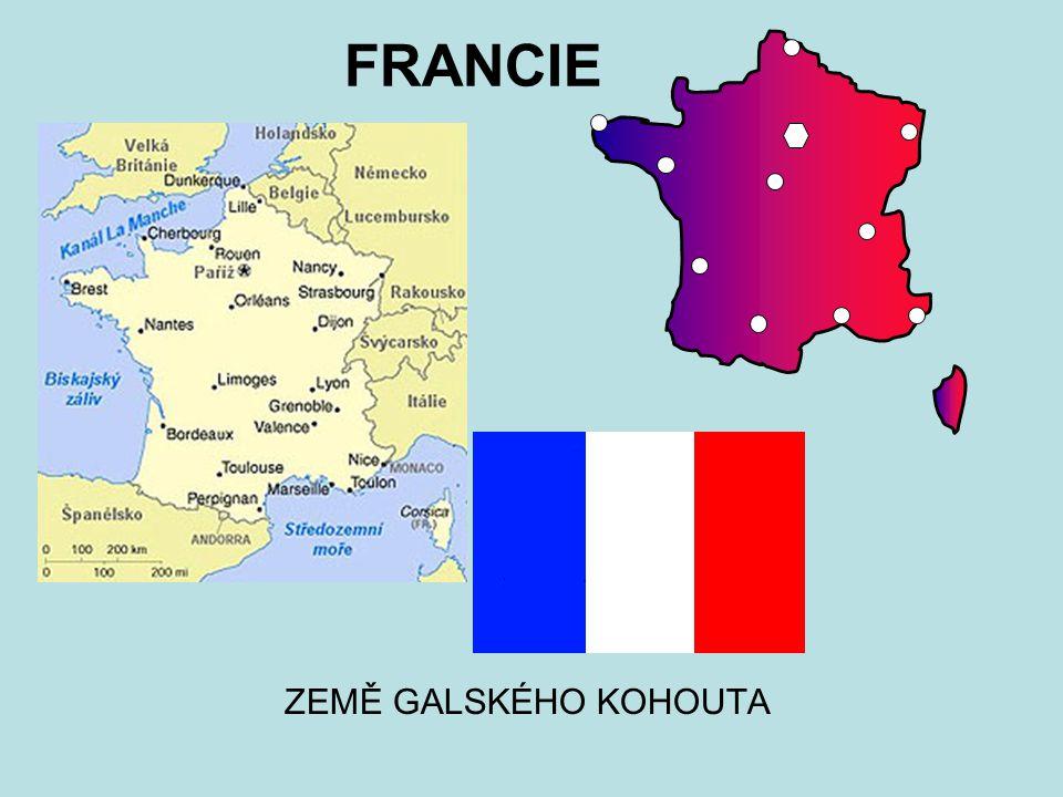 FRANCIE ZEMĚ GALSKÉHO KOHOUTA
