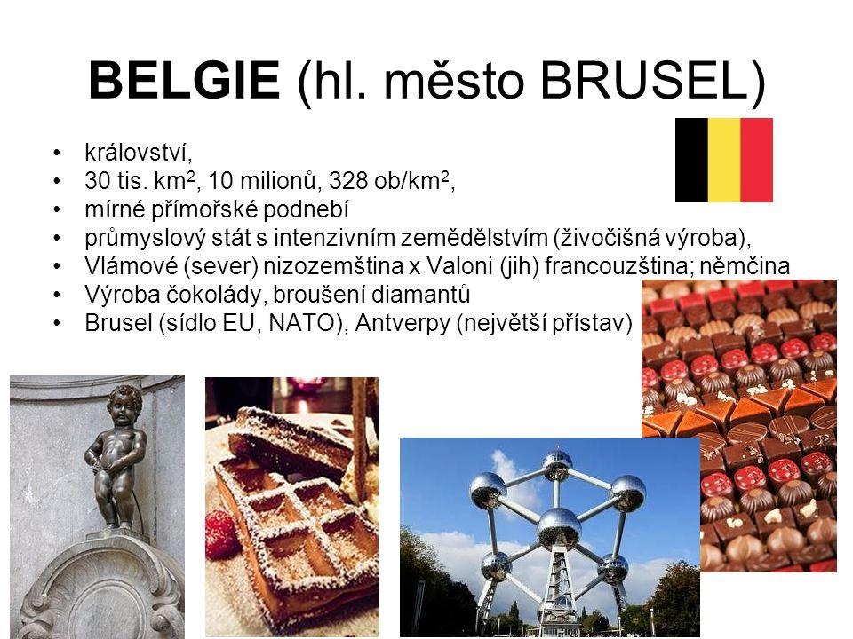 BELGIE (hl. město BRUSEL) království, 30 tis. km 2, 10 milionů, 328 ob/km 2, mírné přímořské podnebí průmyslový stát s intenzivním zemědělstvím (živoč
