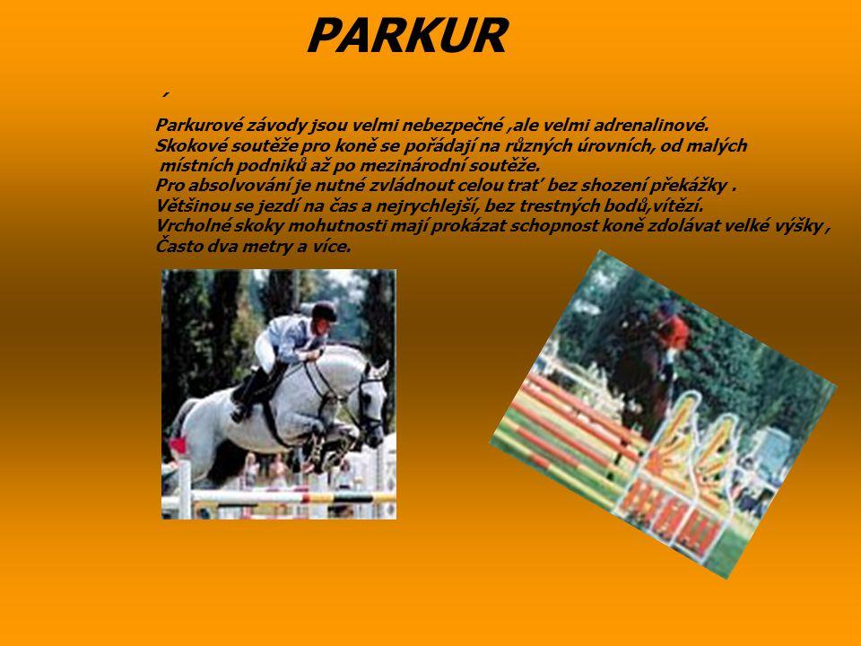 PARKUR ´ Parkurové závody jsou velmi nebezpečné,ale velmi adrenalinové. Skokové soutěže pro koně se pořádají na různých úrovních, od malých místních p