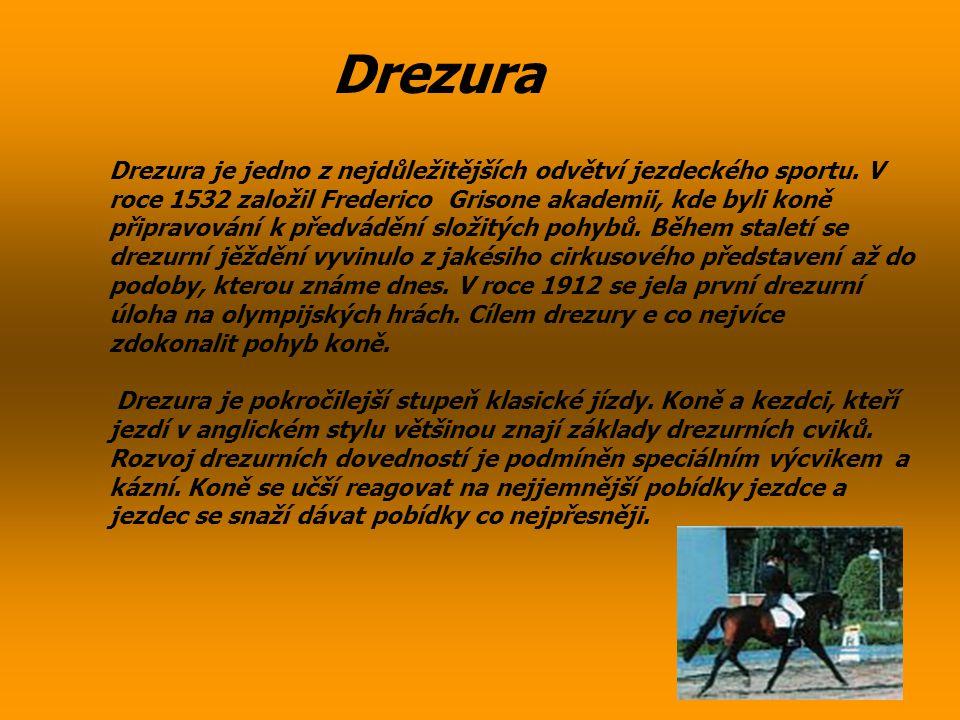 Drezura Drezura je jedno z nejdůležitějších odvětví jezdeckého sportu. V roce 1532 založil Frederico Grisone akademii, kde byli koně připravování k př