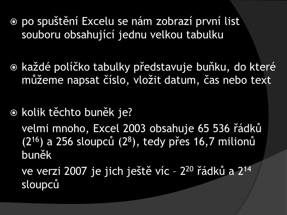  po spuštění Excelu se nám zobrazí první list souboru obsahující jednu velkou tabulku  každé políčko tabulky představuje buňku, do které můžeme naps