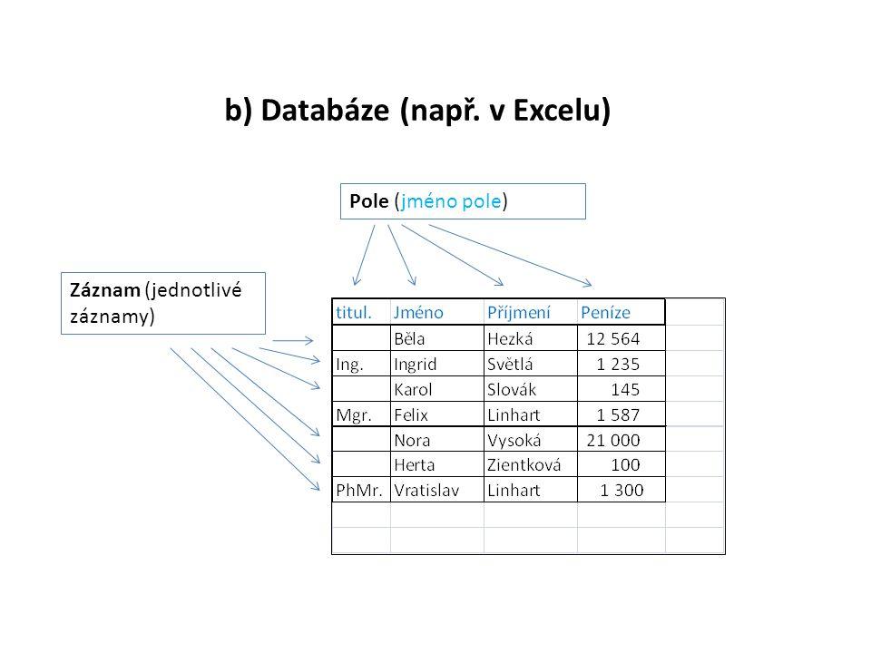 b) Databáze (např. v Excelu) Pole (jméno pole) Záznam (jednotlivé záznamy)