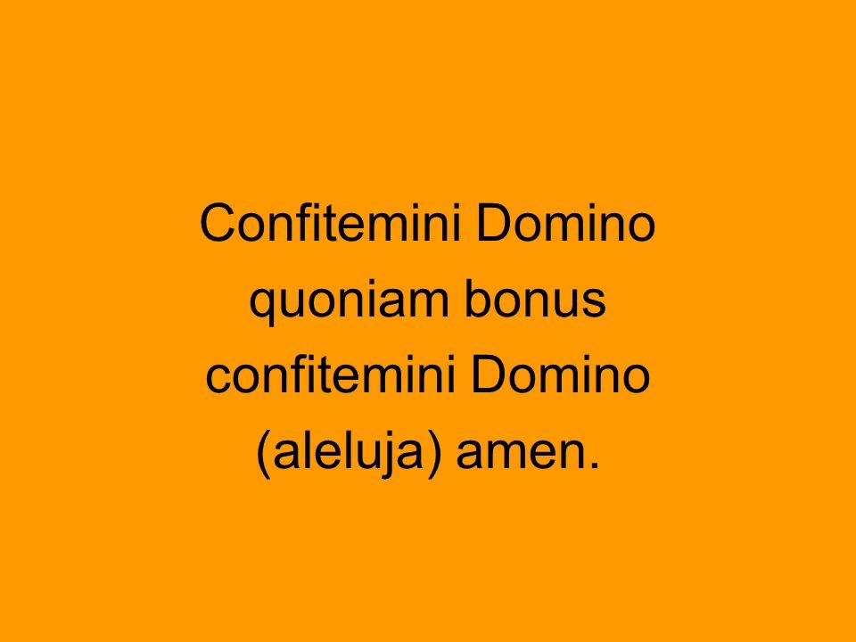 Confitemini Domino quoniam bonus confitemini Domino (aleluja) amen.