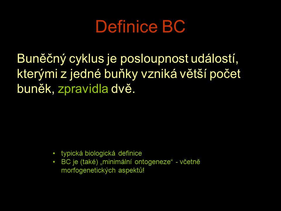 Definice BC Buněčný cyklus je posloupnost událostí, kterými z jedné buňky vzniká větší počet buněk, zpravidla dvě. typická biologická definice BC je (