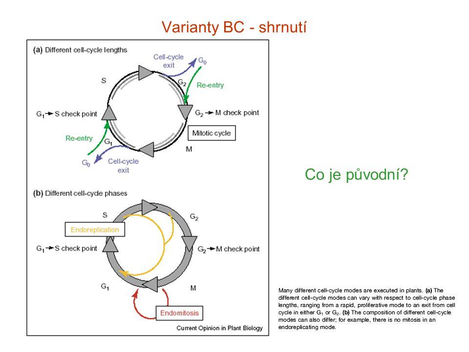 Varianty BC - shrnut í Co je původní?