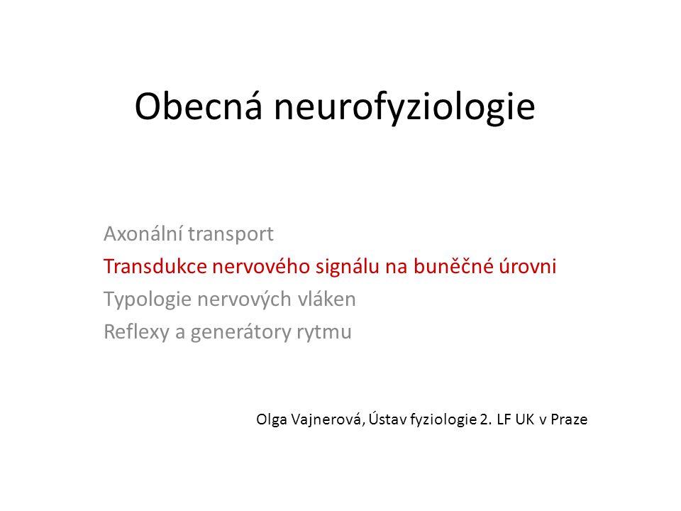 Obecná neurofyziologie Axonální transport Transdukce nervového signálu na buněčné úrovni Typologie nervových vláken Reflexy a generátory rytmu Olga Vajnerová, Ústav fyziologie 2.
