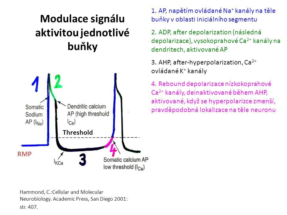 Modulace signálu aktivitou jednotlivé buňky 1.