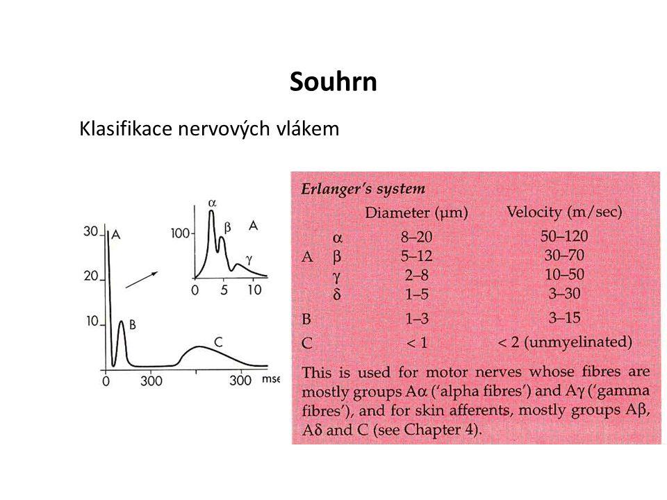 Souhrn Klasifikace nervových vlákem
