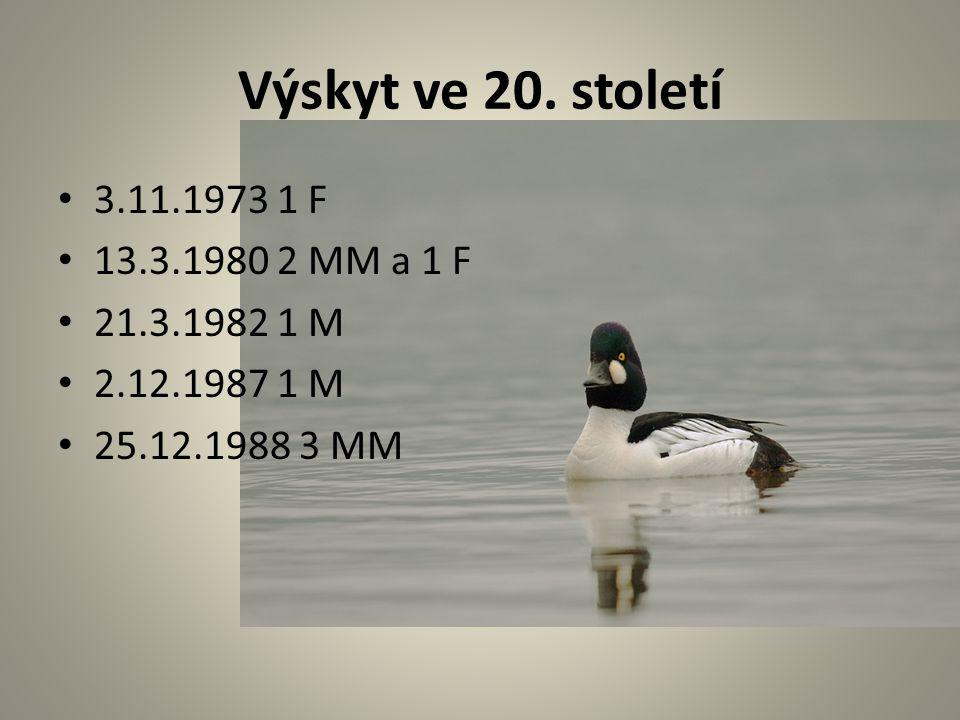 Výskyt ve 20. století 3.11.1973 1 F 13.3.1980 2 MM a 1 F 21.3.1982 1 M 2.12.1987 1 M 25.12.1988 3 MM